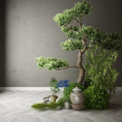 现代植物花卉