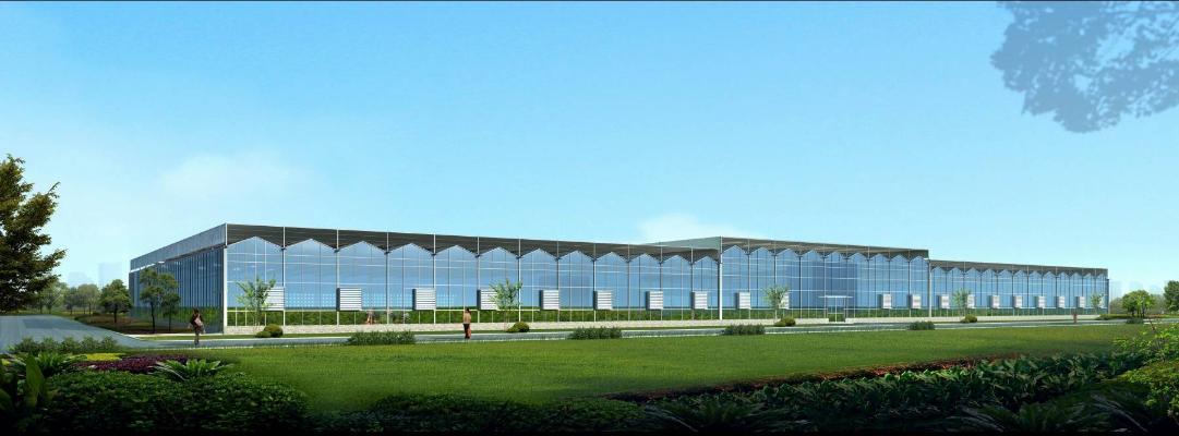 现代温室大棚 种植大棚 厂房