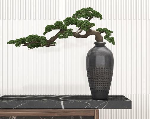 新中式松樹 盆栽