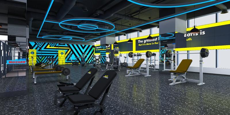 现代健身房 力量专区 运动器械