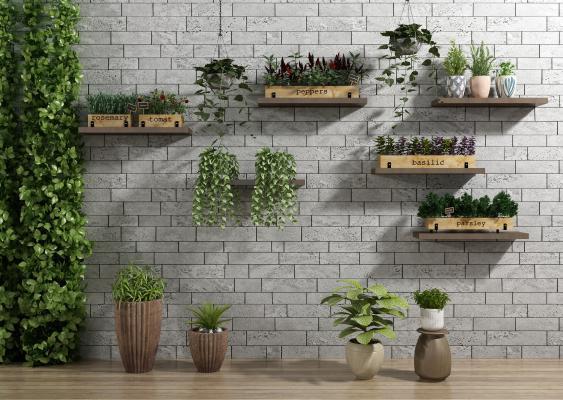 现代植物盆栽 绿植墙