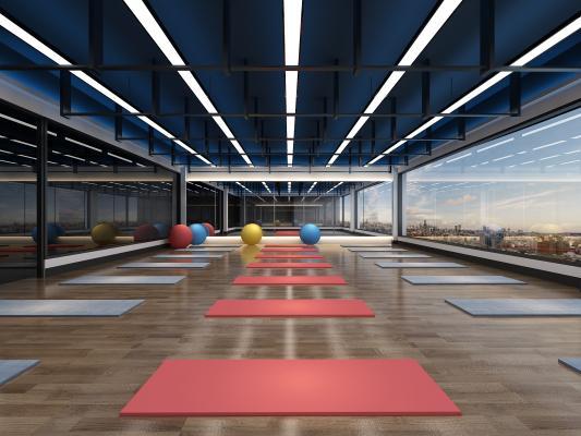 现代健身房 瑜伽房