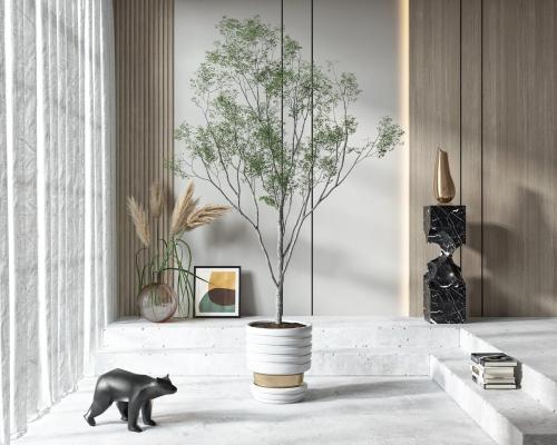 现代盆栽摆件组合