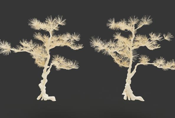 现代风格植物