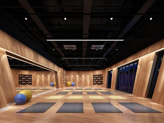 现代瑜伽馆 健身房 瑜伽垫