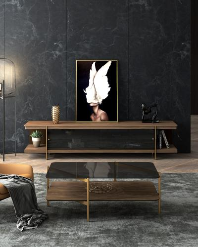 现代风格木质电视柜 茶几
