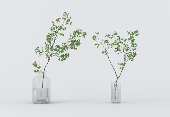 日式水生植物组合
