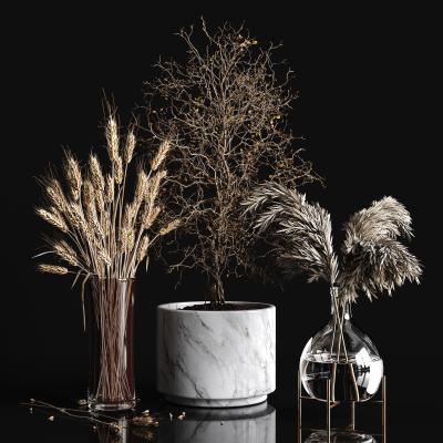 现代植物 摆件