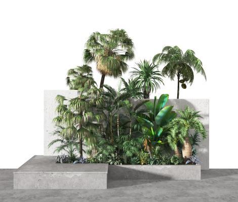 现代植物 景观 园艺