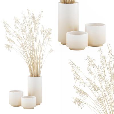 现代陶瓷花瓶 干草