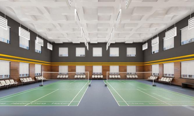 现代羽毛球馆