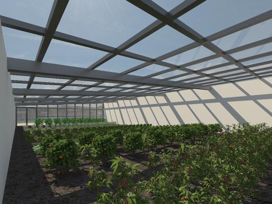 现代蔬菜大棚温室