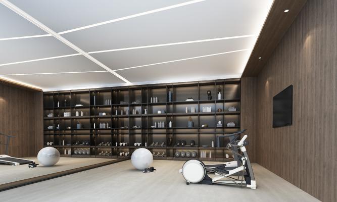 现代健身房 瑜伽球 健身器材