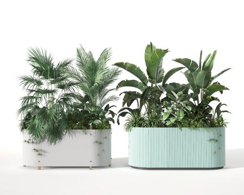 现代盆栽 盆景 植物堆