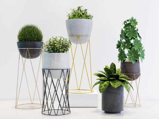 现代金属花架绿植盆栽组合