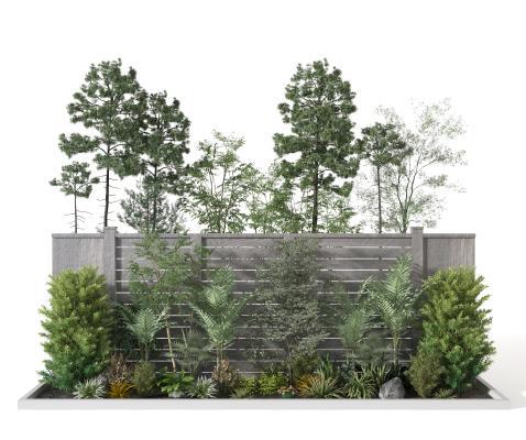 现代植物堆