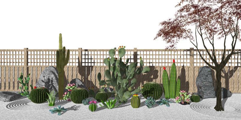 现代庭院景观 仙人掌 仙人球 枯山水