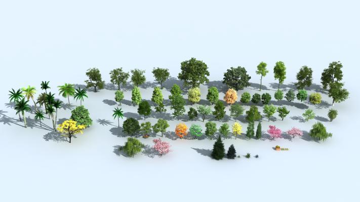 现代植物小品