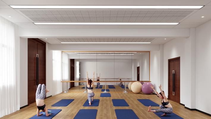 现代舞蹈教室 瑜伽球 健身球