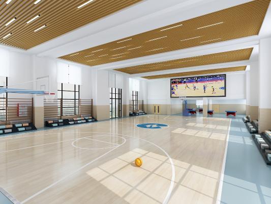 现代室内校篮球场 篮球框 椅子