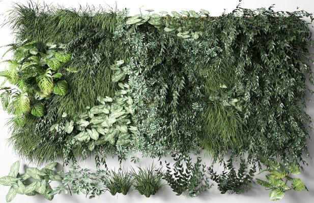 现代植物墙组合