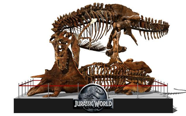 现代恐龙化石 恐龙 骨架