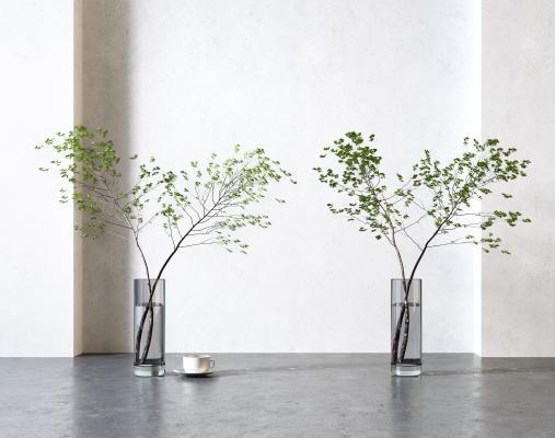 现代水生植物绿植组合