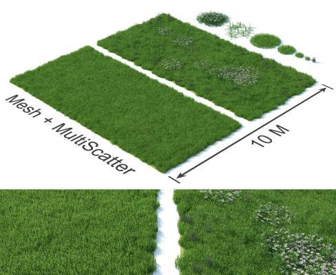 现代草坪 草地