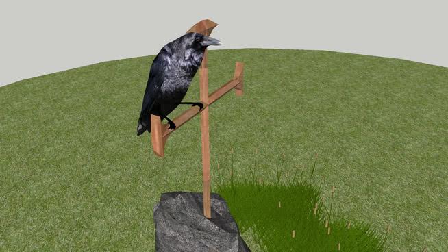 3D Raven 黑鹳 欧洲水鸡 白鹳 槌球 草地