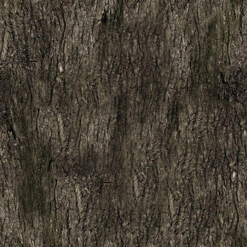 木纹木材-树皮 010