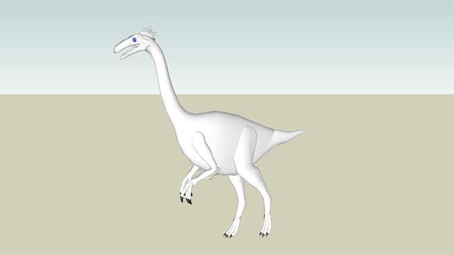 象甲亚龙 美洲白鹭 起重机 琵鹭 鸟 其他