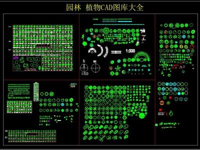 園林 植物CAD圖庫大全